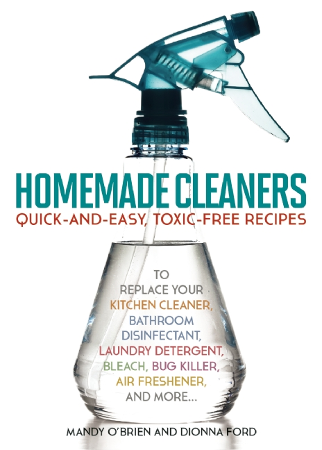 homemade cleaners book