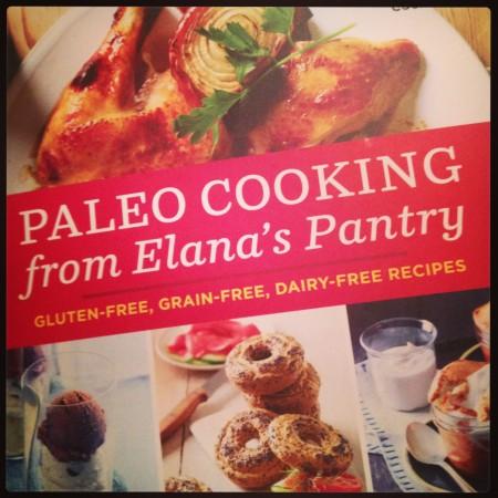 paleo cooking from elanas pantry gluten free grain free dairy free recipes