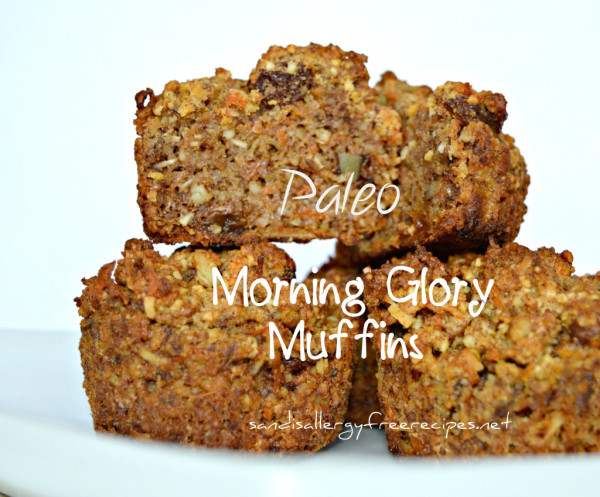 Paleo-Morning-Glory-Muffins